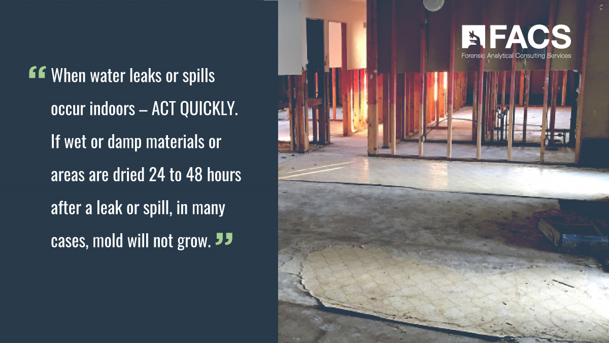 Act Quickly when water leaks or spills