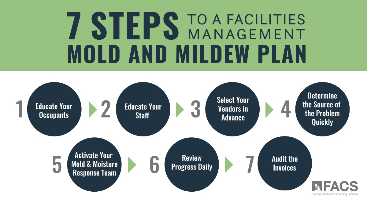 7 Steps to a Facilities Management Mold and Mildew Plan