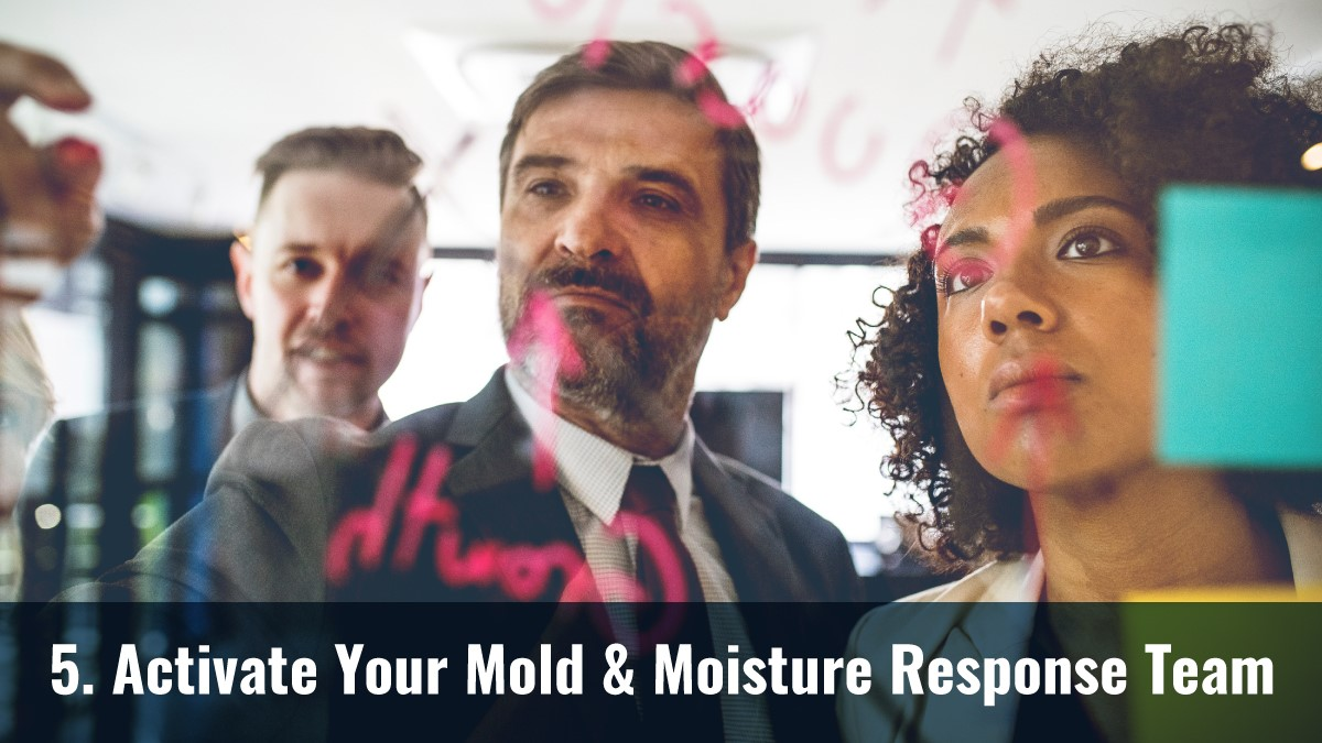 Activate Your Mold & Moisture Response Team