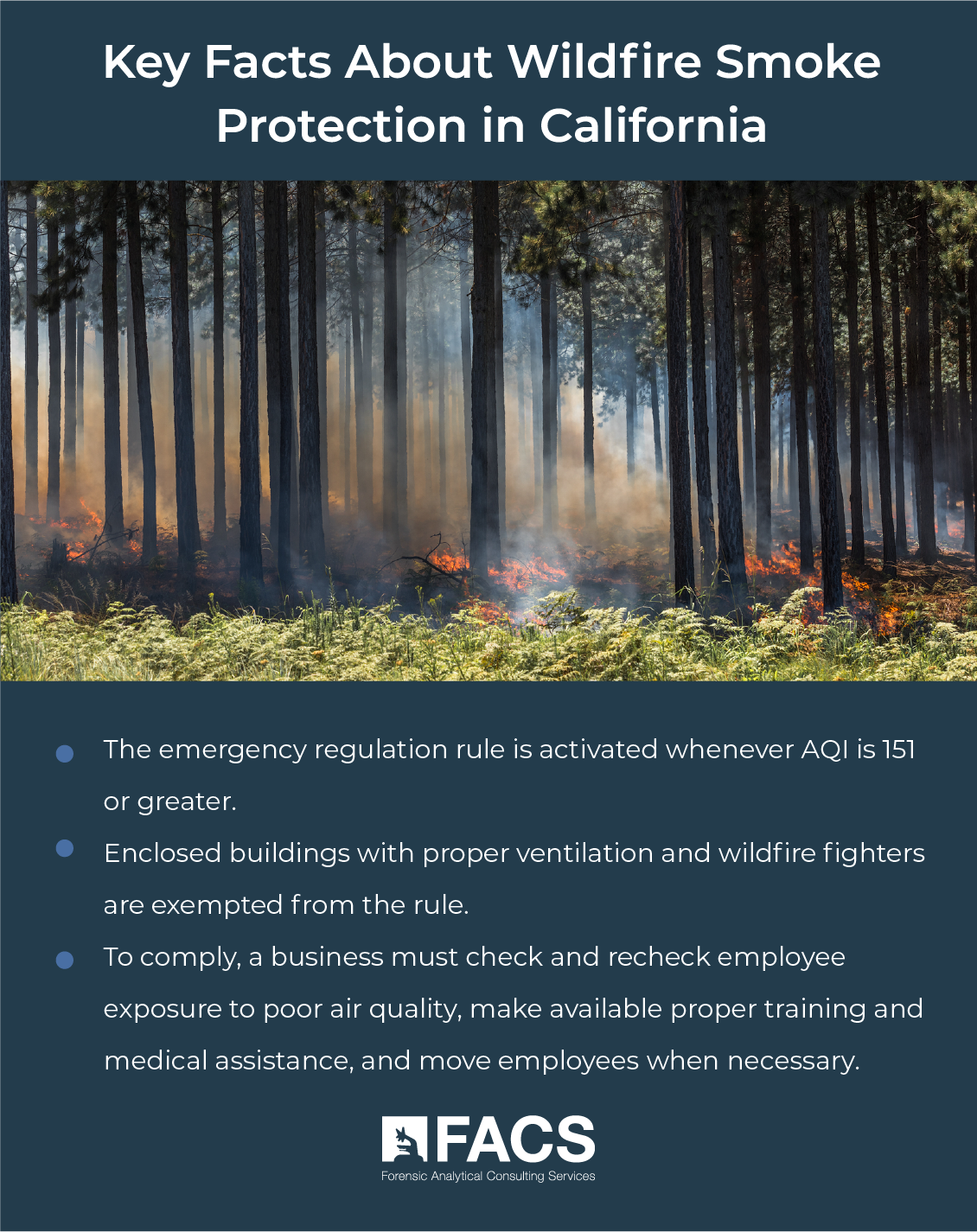 Key Facts About Wildfire Smoke Protection in California