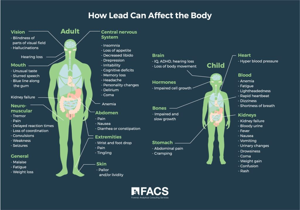 How Lead Can Affect the Body
